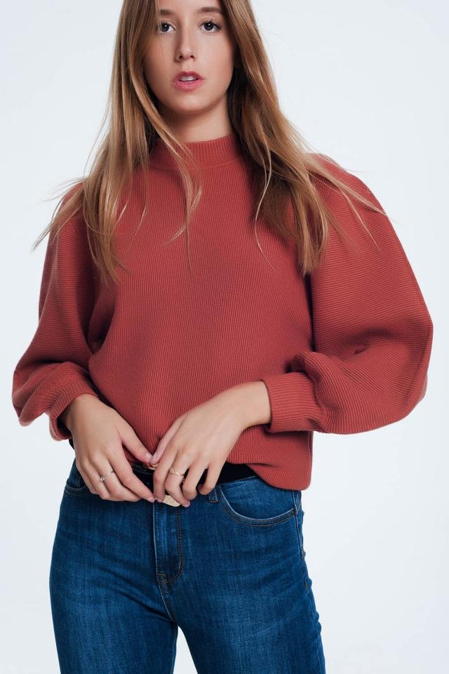 Bruine trui met lange mouwen en ronde hals