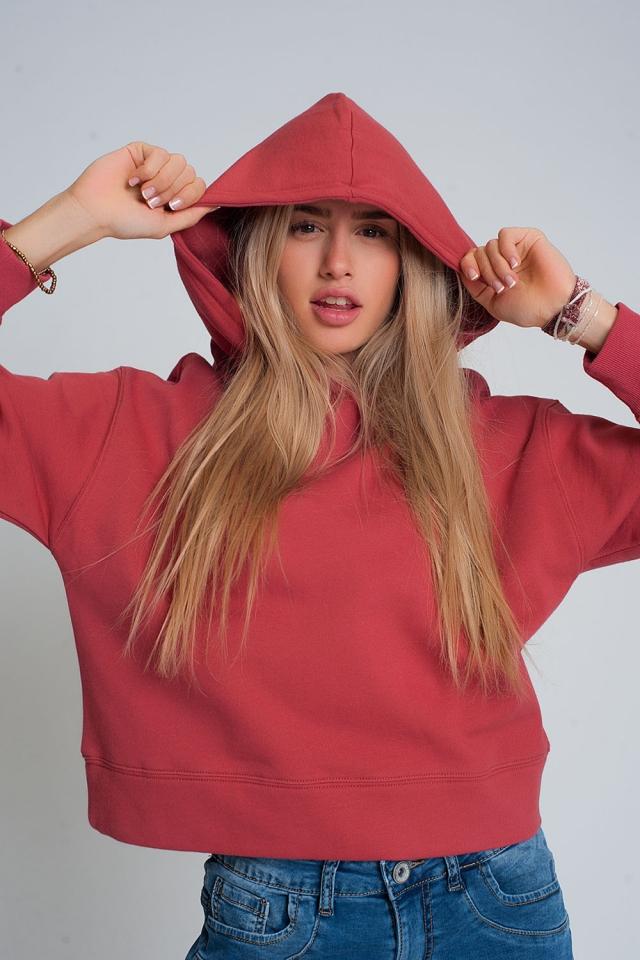 Sweatshirt met capuchon in kastanjebruin